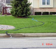 A sump pump hose running through a yard into a city street