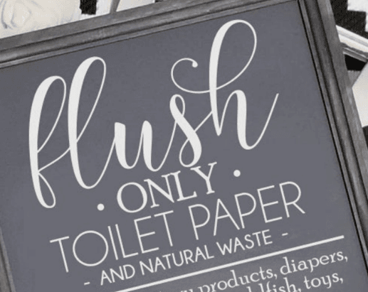 Flush Only Toilet Paper Graphic
